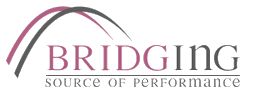 Bridging Solutions